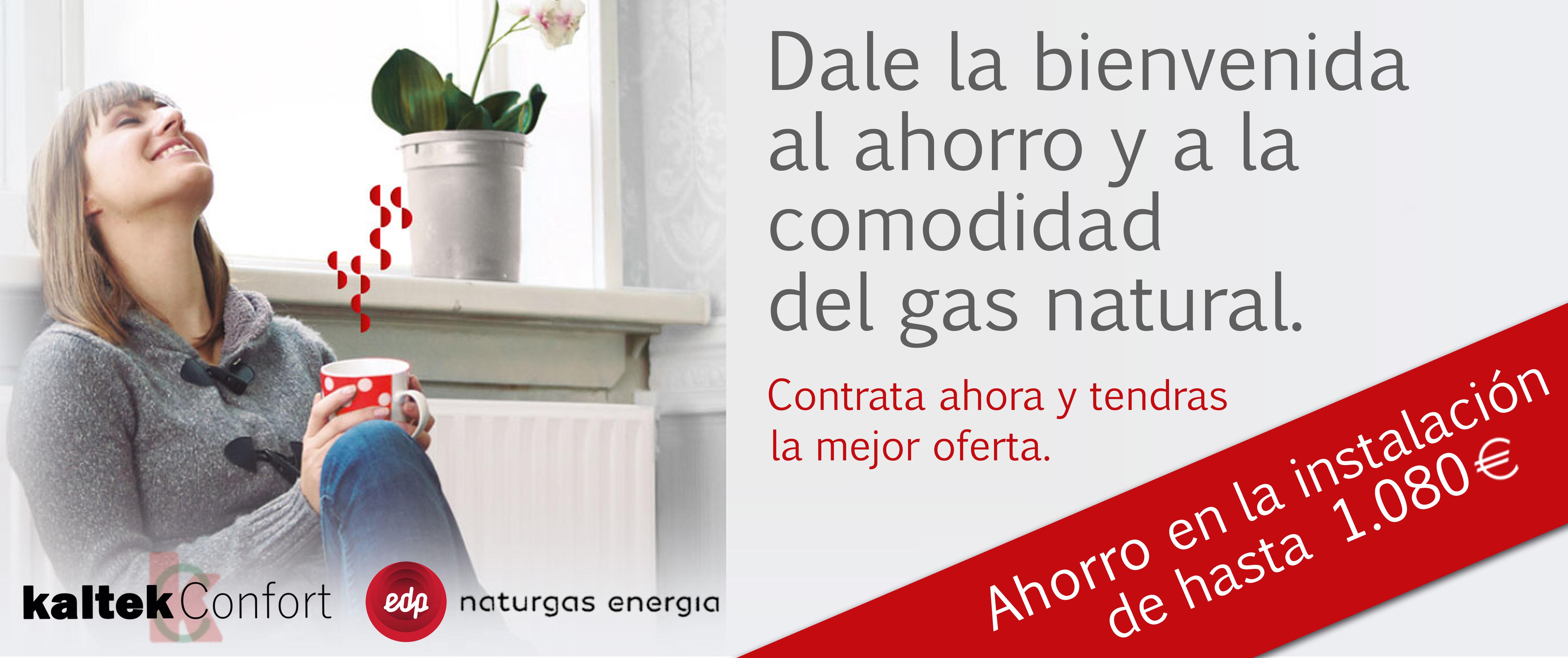 Kaltek confort calefacci n gas y fontaner a en bizkaia - Ahorro calefaccion gas ...